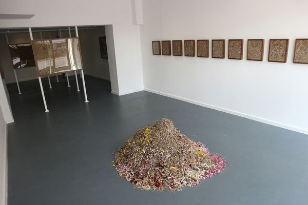 DUST: A Solo Show by Rebecca Louise Law, installation view