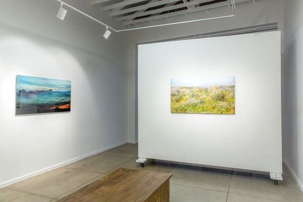 Transpacific Exposures, installation view