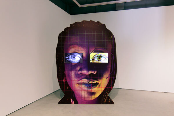 Tony Oursler, installation view