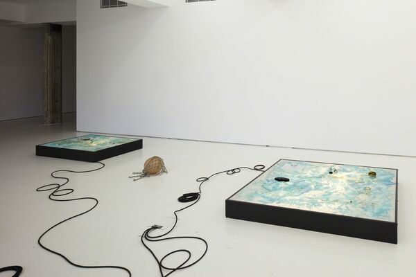 Tuomas A. Laitinen: A Porous Share, installation view