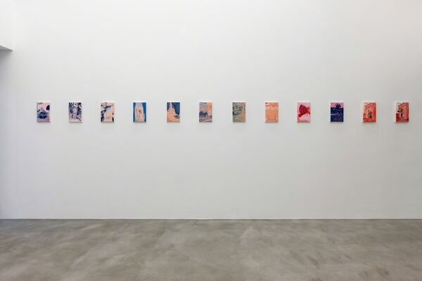 Colin Waeghe — Jungle Bloom, installation view