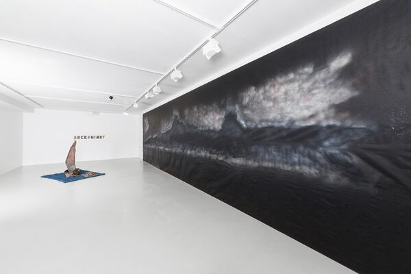 Haim Sokol. Our coming was expected on earth, installation view