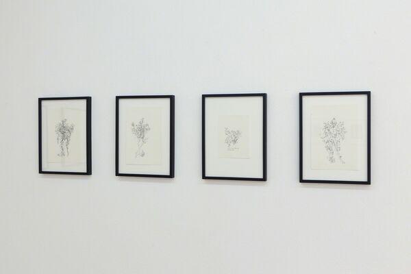 Alex Mirutziu, installation view