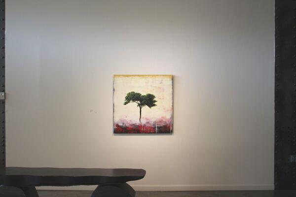 Robert Marchessault | The Lorax Dreams, installation view