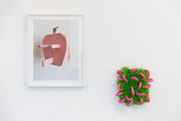 Nichts Ist Gewöhnlich / Nothing Is Ordinary - Diana Wolzak, installation view