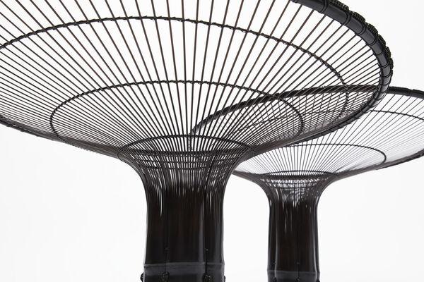 Yumekoubou Kyoto Tanabe Chikuunsai IV Collection, installation view
