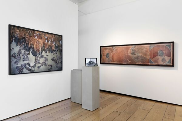 Flowers at Photo London 2018, installation view
