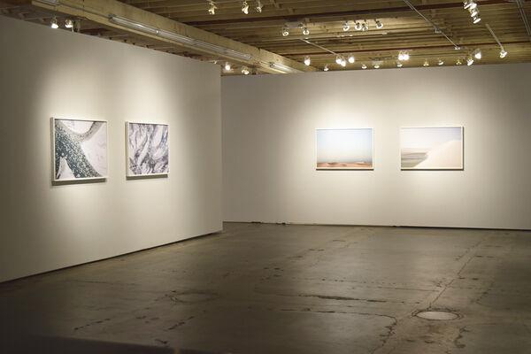 Latitude, installation view