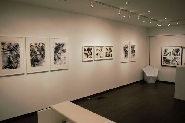 The Arbor Series, installation view