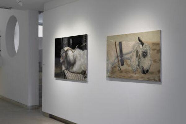 Everyday Extraordinary: Suhasini Kejriwal, installation view