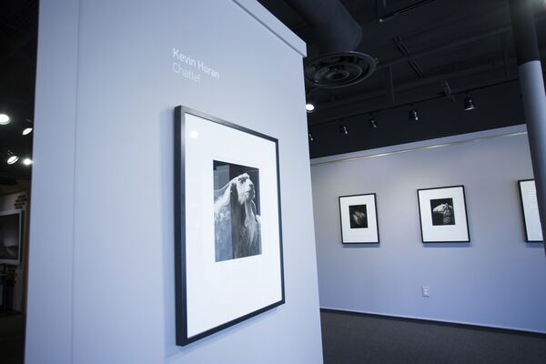 Chattel, installation view