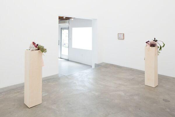 Miranda, installation view