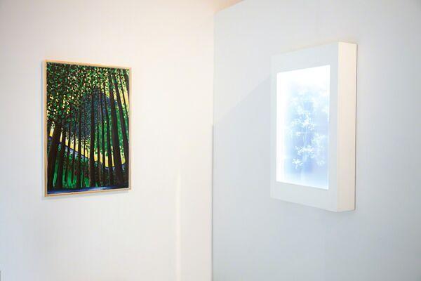 Human/Nature, installation view