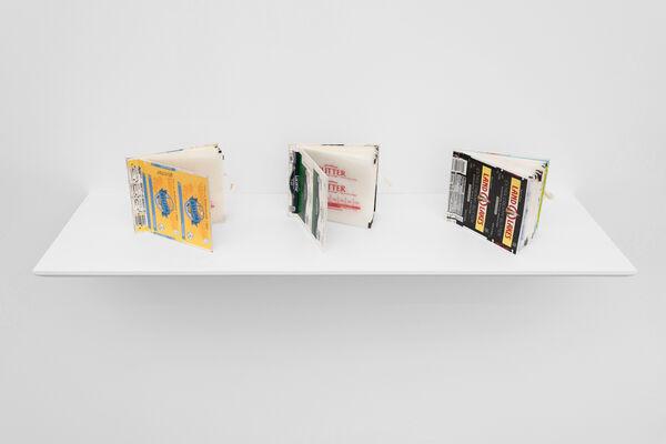 Homo-entanglement, installation view