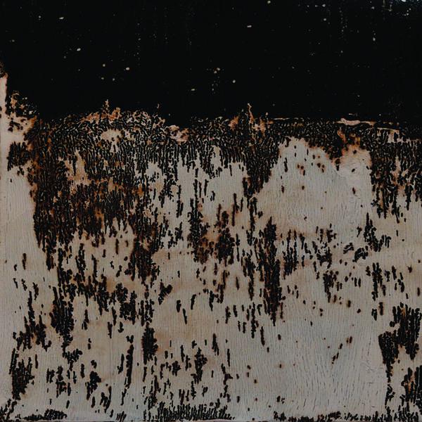 Maria Misselbrook, 'Ants...', 2019