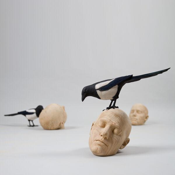 "Gerard Mas, '""Ornitologies birds""""Ornitologies heads""', 2016"