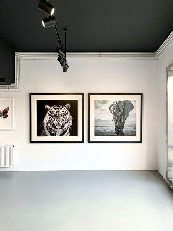 Cameron Yarrow, 'Walk the Line', 2019, Photography, Archival pigment print, Kunsthuis Amsterdam