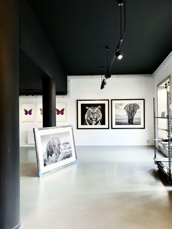 Cameron Yarrow, 'Rush', 2018, Photography, Archival pigment print, Kunsthuis Amsterdam