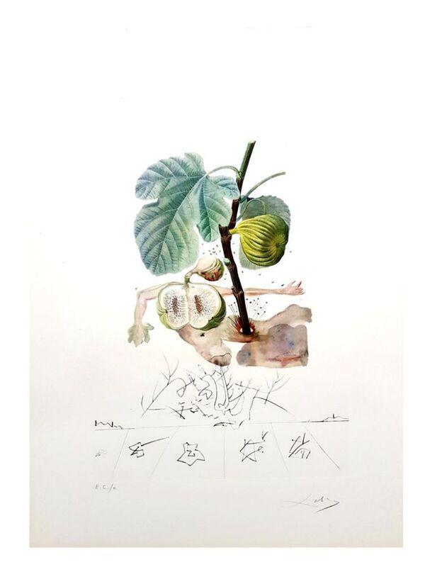 Salvador Dalí, 'Flordali - Homme Figuier', 1969, Print, Original etching on Rives paper, Samhart Gallery