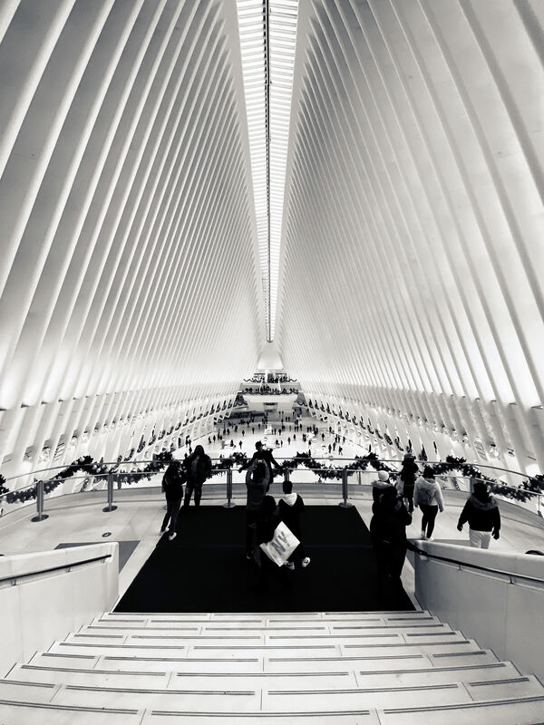 Richard Longo Burrows, 'WTC Oculus', 2018, Photography, Archival Pigment Prints on paper, White Wall Space