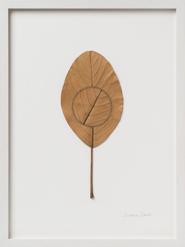 Susanna Bauer, 'Navigation XIII', 2021, Drawing, Collage or other Work on Paper, Magnolia leaf and cotton tread, Muriel Guépin Gallery