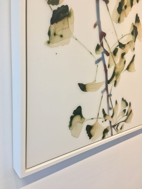Jackie Battenfield, 'Salt Mist', 2018, Painting, Acrylic on mylar mounted on acrylic panel, Kenise Barnes Fine Art