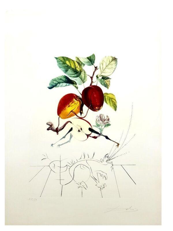 Salvador Dalí, 'Flordali - Pomme Dragon', 1969, Print, Original etching on Rives paper, Samhart Gallery