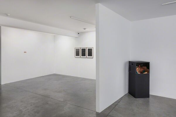 Hopeless Emptiness, installation view