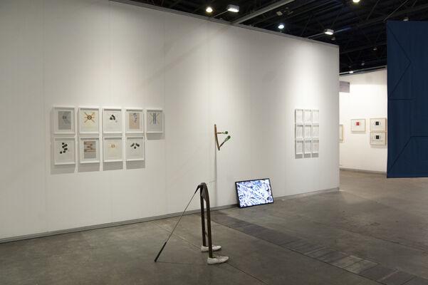 Instituto de Visión at arteBA 2019, installation view
