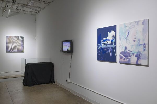 Nature, installation view
