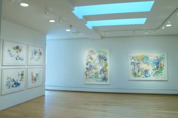 Emotional Landscapes, installation view