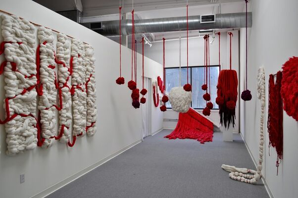 Incarnadine, installation view