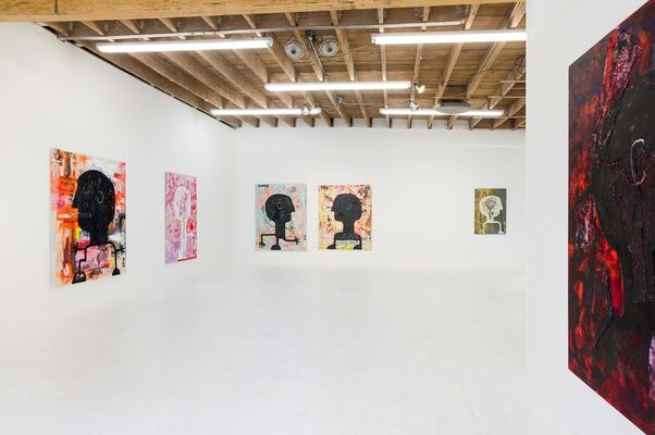 Danny First 'Case Study', installation view