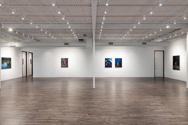 Lyle Ashton Harris: Flash of the Spirit, installation view