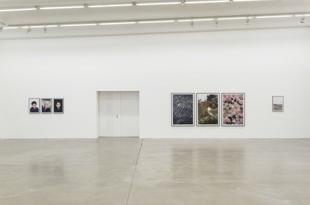 Exit, installation view
