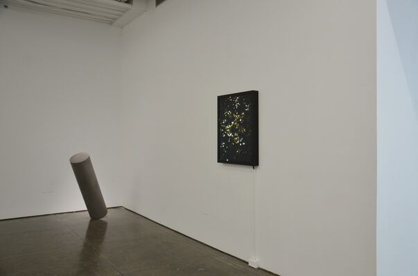 New voices: a dsl collection story, installation view
