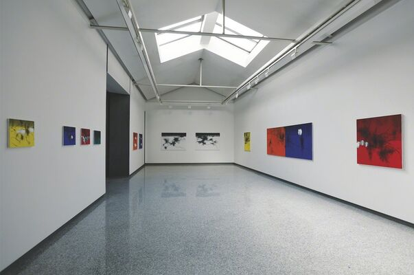 Koji Yamamoto - Another Nature & A Living Old Pine, installation view
