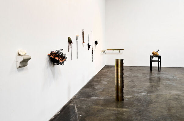 Shirley Tse: Vital Organs & Other Stories, installation view