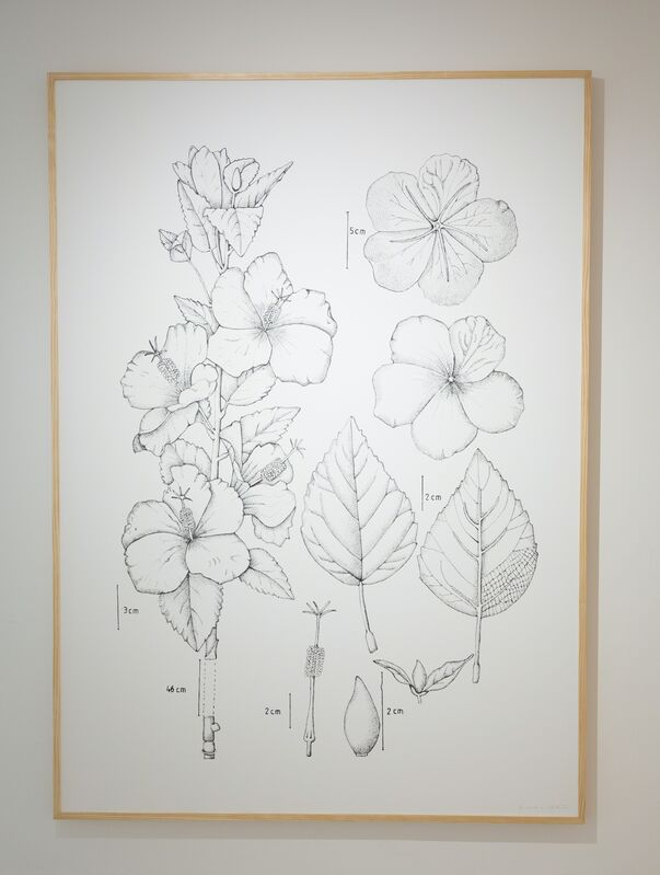 Chris Chong Chan Fui, 'BOTANIC', 2013, Drawing, Collage or other Work on Paper, Digital prints on paper, 8 pieces, Singapore Art Museum (SAM)