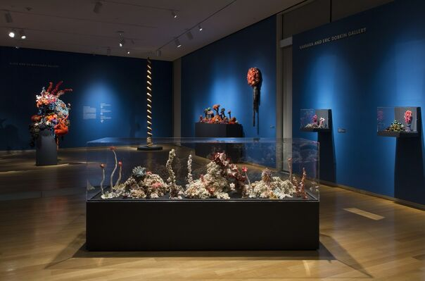 Crochet Coral Reef: TOXIC SEAS By Margaret and Christine Wertheim and the Institute For Figuring, installation view