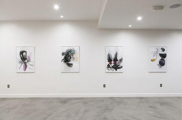 Angel Ricardo Ricardo Rios: The Pleasure of Soft Things, installation view