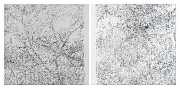 Cynthia Kampelmacher, 'Maraña desplazamiento', 2015