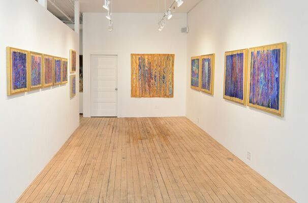 Secret Life of Colors, installation view