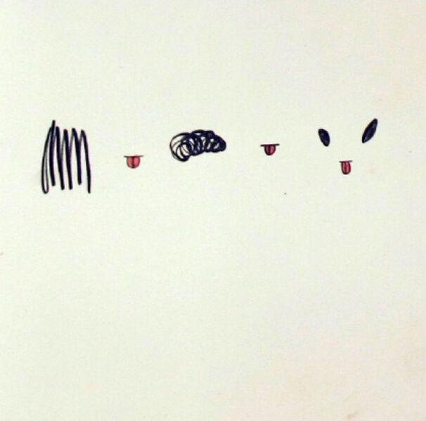 Mika Rottenberg, 'm48', 2011