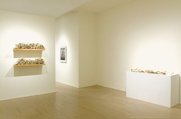 Carol Young, Scrolls and Sheets, installation view