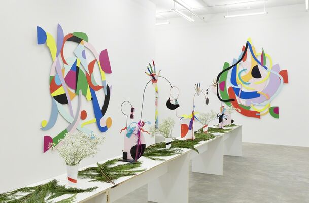 Nathan Carter: The DRAMASTICS and The Fascinators, installation view