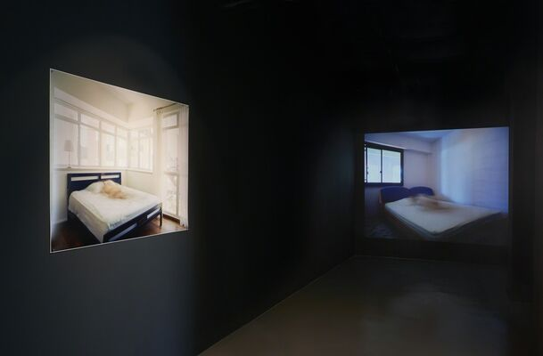 LIMINAL STATE, installation view