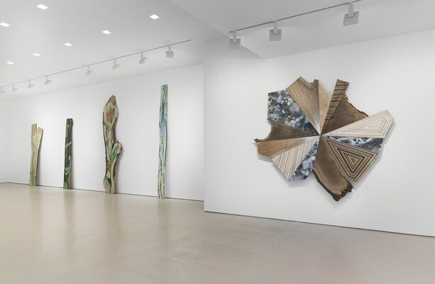 Jason Middlebrook, installation view