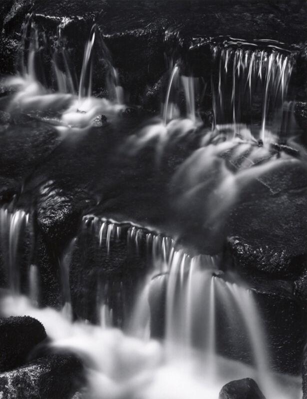 Ansel Adams, 'Fern Spring, Dusk, Yosemite Valley', 1961, Photography, Silver Gelatin Print, Weston Gallery