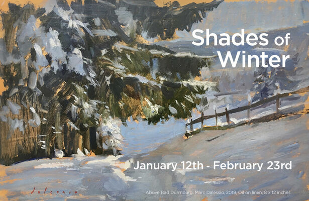 Shades of Winter, installation view